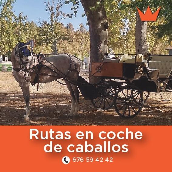ruta en coche de caballos chichon