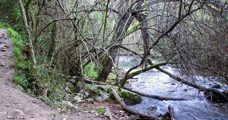 ruta natural
