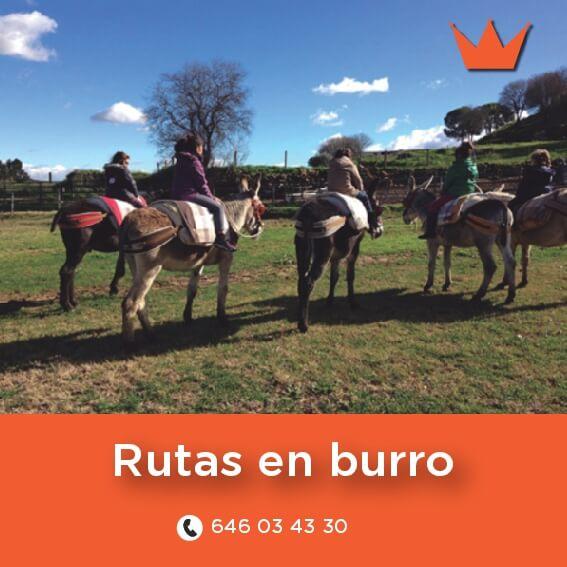 rutas-en-burro-chinchon
